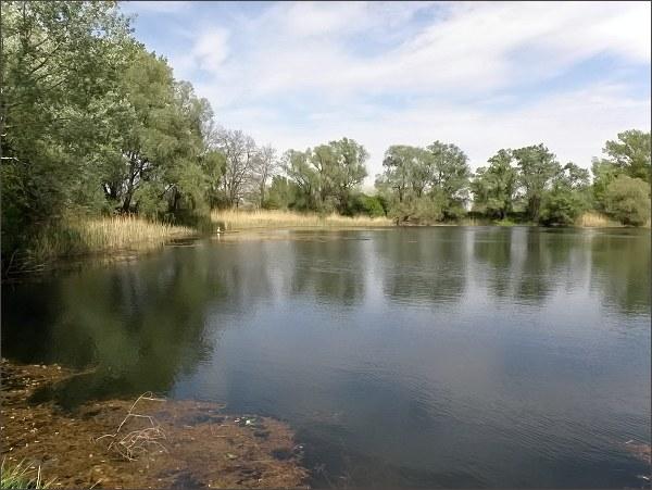Prírodná rezervácia Opatovské jazierko