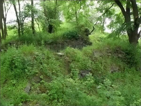 Kalich, torza hradu v nejvyšší partii kopce