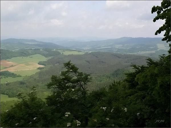 Sedlo. Pohled k Bukové hoře