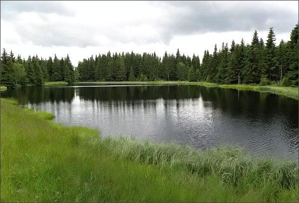 Přírodní rezervace Prameniště Chomutovky. Spálený rybník