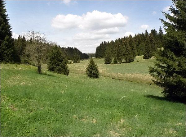 Údolí Rolavy