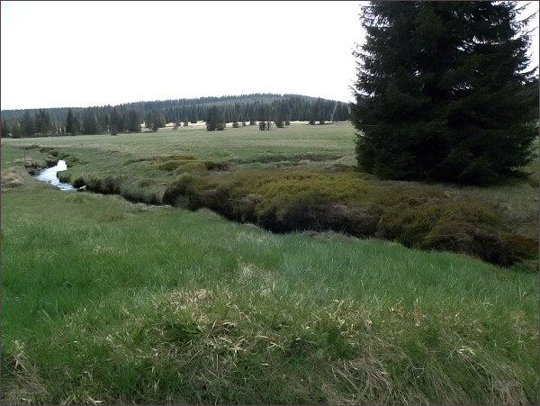 Přírodní památka Přebuzské vřesoviště, říčka Rolava