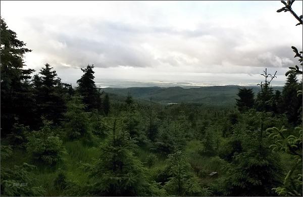 Pohled do Mostecké pánve