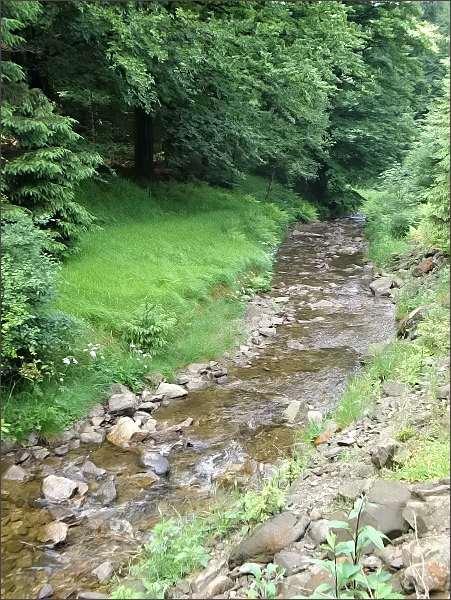 Pstružný potok