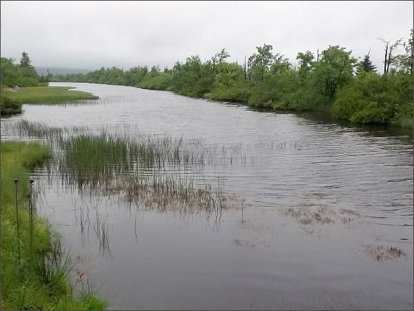 Přírodní park Východní Krušné hory.  Dlouhý rybník