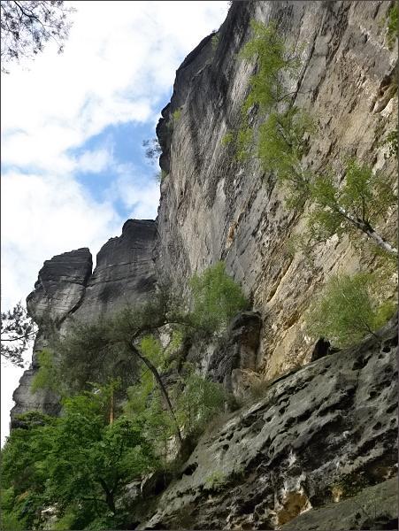 Monumentální pískovcové stěny nad cestou od Pravčické brány k Mezní louce