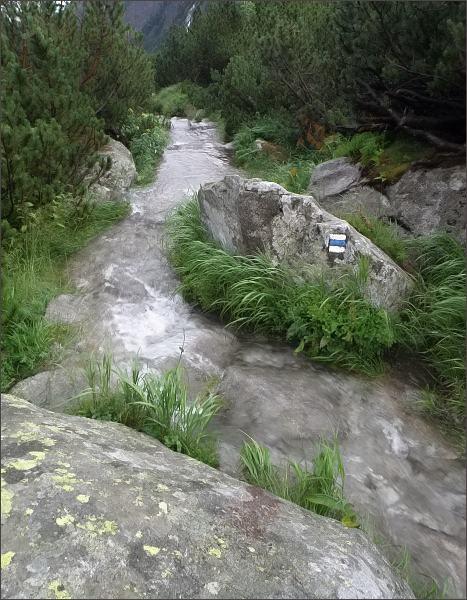 Veľká Studená dolina, po přívalovém dešti