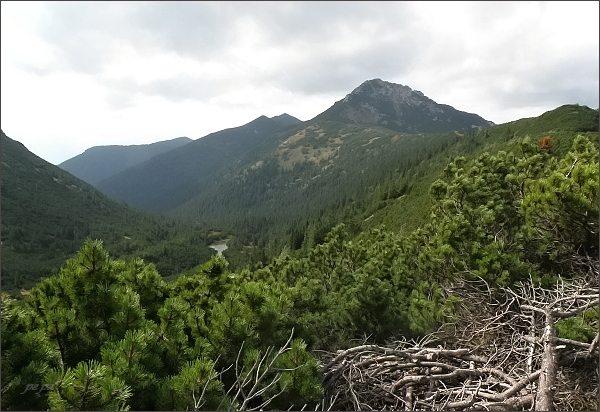 Sivý vrch, Bobrovecké pleso