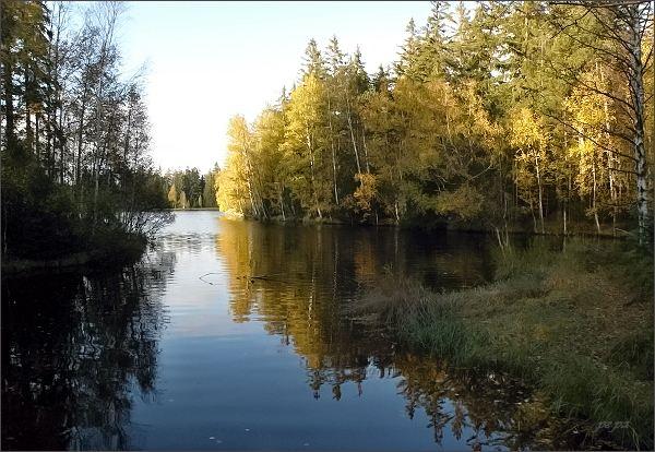 Národní přírodní rezervace Kladské rašeliny, Kladský rybník