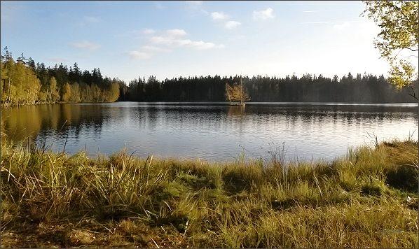 Podzimním Slavkovským lesem od severu k jihu