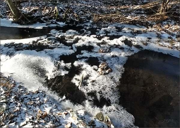 Bělá nad Boskovickou přehradou