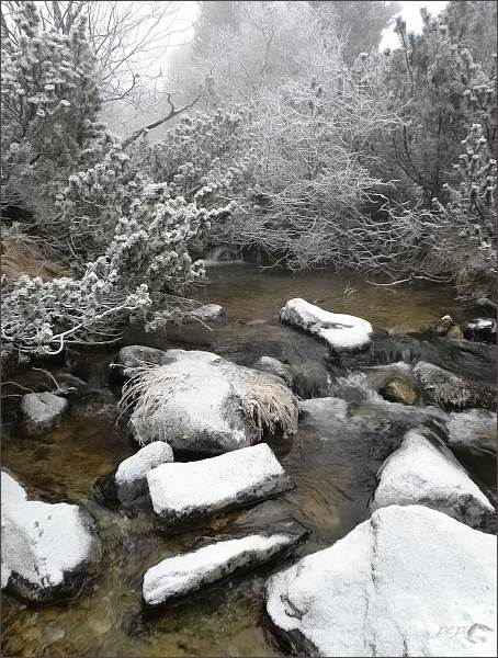 Mlynický potok