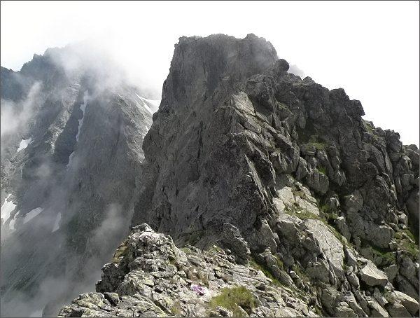 Žabia veža od Východnej Volej štrbiny