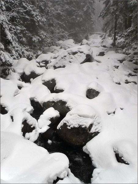 Mengusovská dolina, řeka Poprad