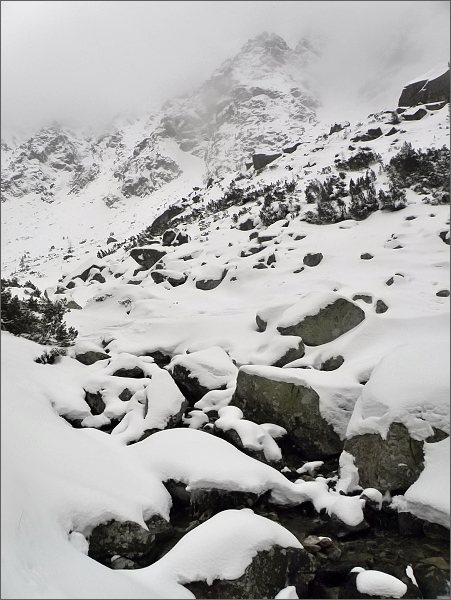 Dolina Zlomísk, Ľadový potok