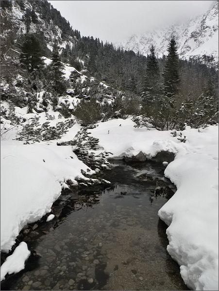 Ľadový potok nad Popradským plesom