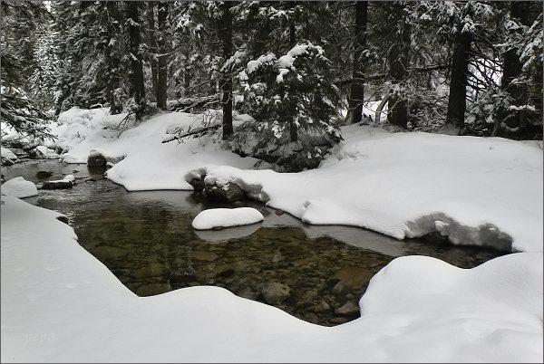 Mengusovská dolina, Hincov potok
