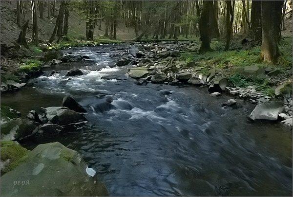 Údolí Krounky nad Rychmburkem