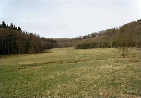 Rakovecké údolí ve své horní části
