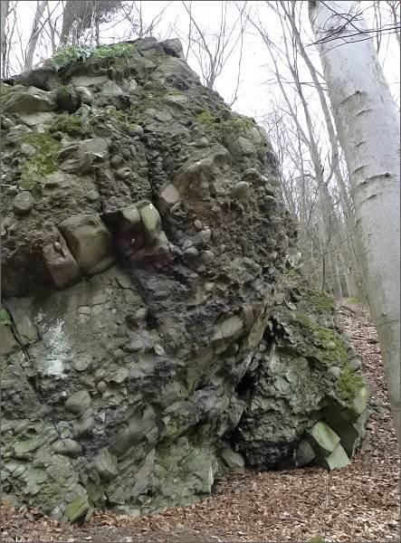 Slepence v dolní části Rakoveckého údolí