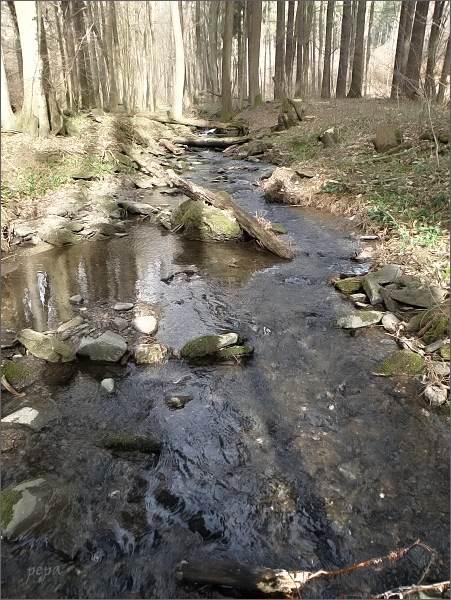 Rakovecký potok pod Černovem