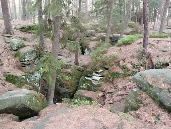 Na rozdíl od jiných známých skalních měst v Čechách<br>nevystupují Toulovcovy maštale nad okolní terén