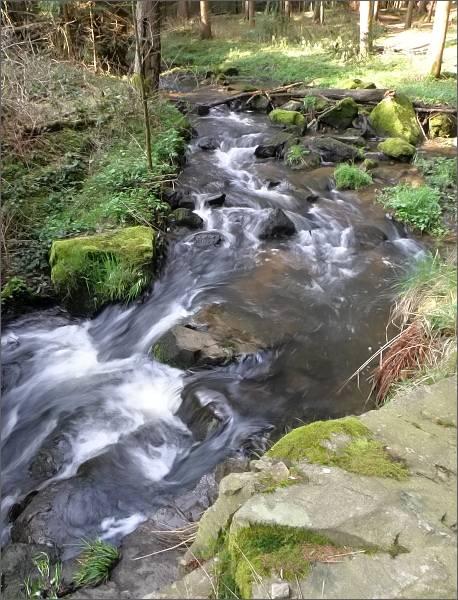 Prosečský potok