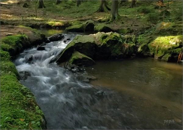 Prosečský potok, Kupadla