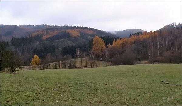 Podzimní Doupovské hory. Pod Šemnickou skálou