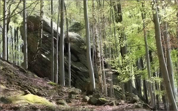 Hostýnské vrchy. Skalní výchozy na Skalném