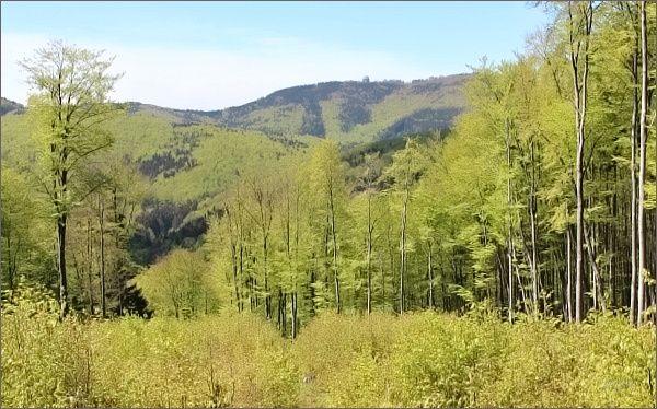 Hostýnské vrchy. Pohled od PP Na Jančích k Hostýnu