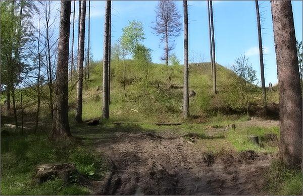Místo, kde stával hrad Nový Šaumburk (Zubříč)