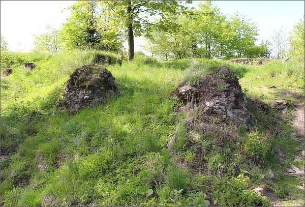 Torzo hradu Nový Šaumburk