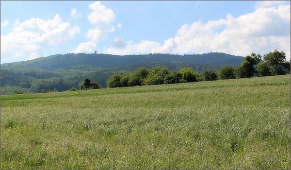 Brdo od Roštína