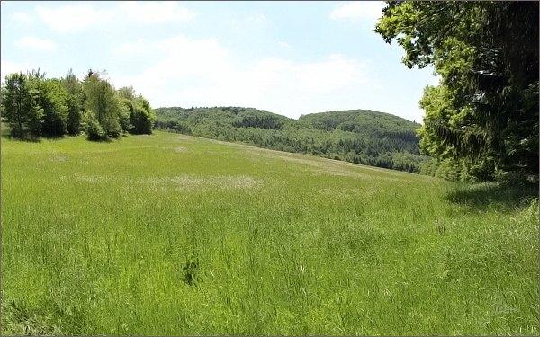 Cesta na Buchlov