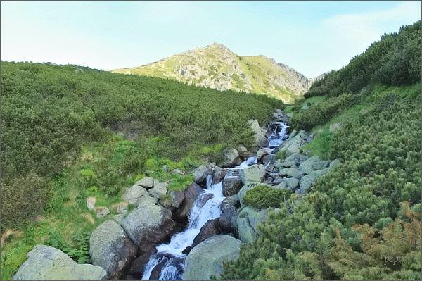 Furkotská dolina a Furkotský potok
