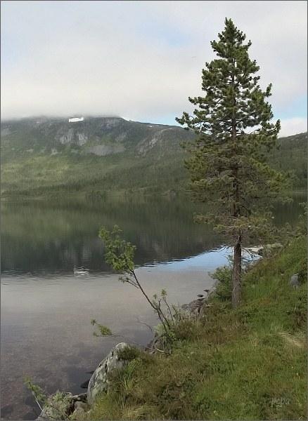 Národní park Ånderdalen. Jezero Åndervatnet