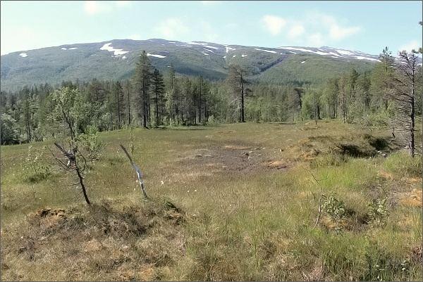 Krajina v Národním parku Ånderdalen