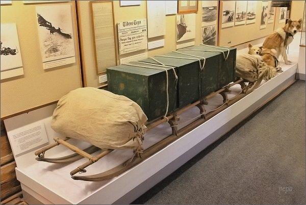 Tromsø, Polarmuseet. Amundsenovy polární saně