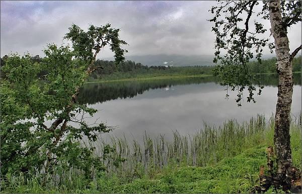 Národní park Stabbursdalen, mokřadní oblast Lompolas