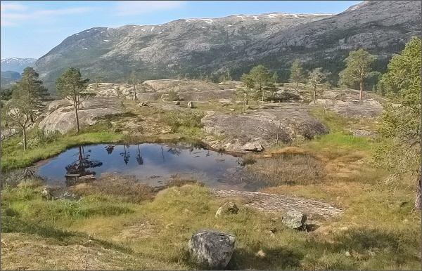 Národní park Rago. Pás tajgy pod jezerem Sølvskarvatnan