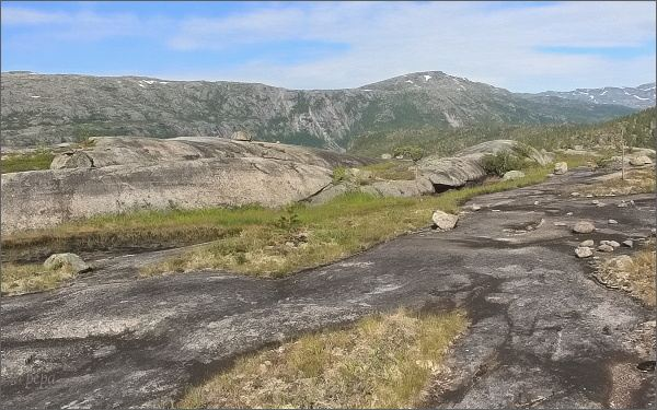 Národní park Rago. Lesotundra pod jezerem Sølvskarvatnan