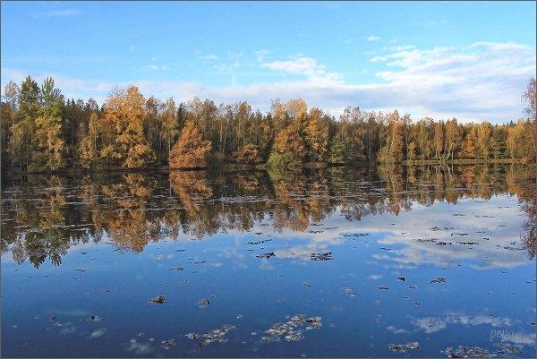 Lužná, Okouní rybník