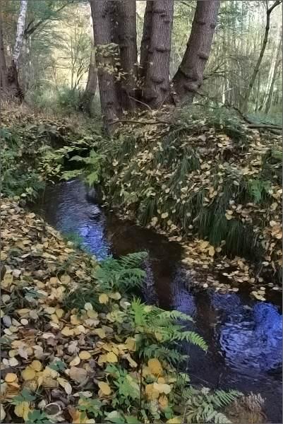 Cesta mě kolem jednoho z přítoků Slatinného potoka přivádí až k obci Ostroh