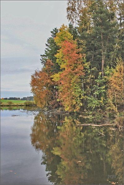 Vlastislavský rybník