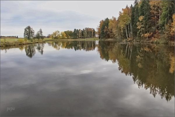 Libá, rybník Malý Frank