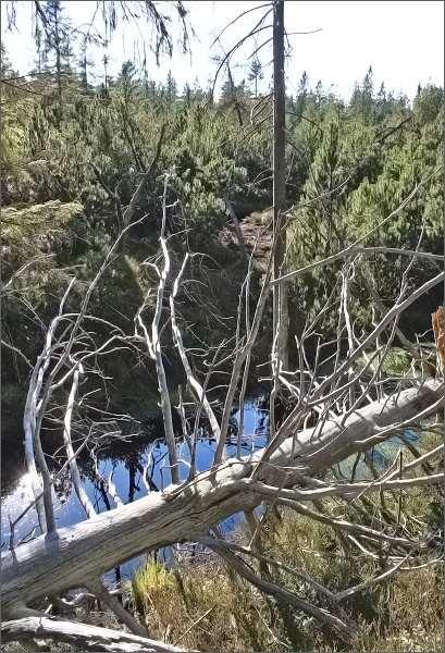 Malé Jeřábí jezero