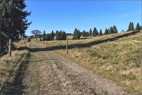 Cesta do Přebuze