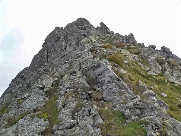 Prostredná Furkotská veža od Nižnej Furkotskej štrbiny