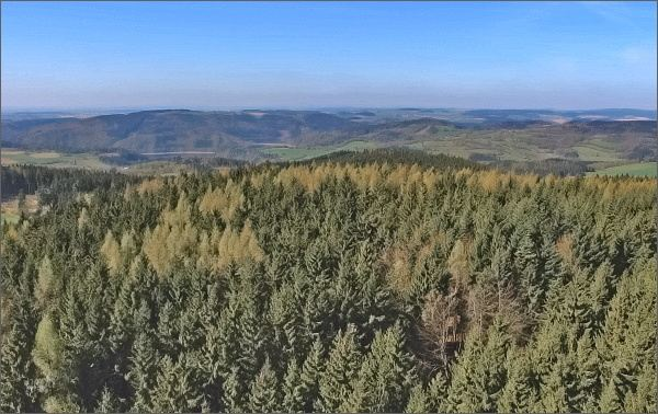 Rozhledna Horní les. Pohled k jihozápadu, k Vírské přehradě